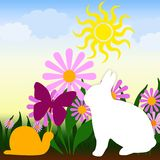 Spring. Rabbit, sun, flower spring comes everywhere Vector Illustration
