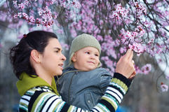 Spring. Mother and her 2 years old child enjoy the early spring between flowers Stock Photo
