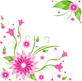 Spring. Growing flower in spring time Royalty Free Stock Photography