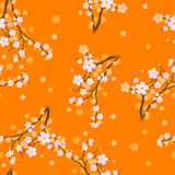 Spring. Vector illustration - Seamless Flower sakura Stock Photography