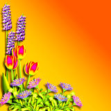 Spring. A painting of one of the four seasons -- Spring vector illustration