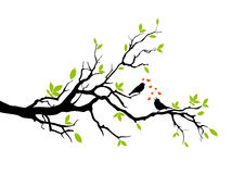 Spring. Two birds in love, sitting on a branch, vector background Stock Photography