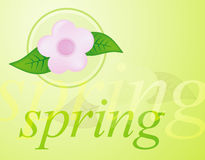 Spring. Background Stock Photography