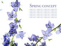 Spring Stock Photo