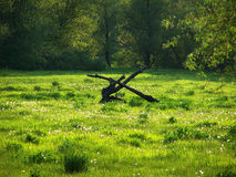 Spring. Spring, east Ukraine royalty free stock photos