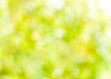 Spring abstract background, blurred sun light - bokeh. Green, yellow and white dots royalty free stock image