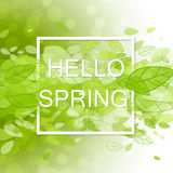 Spring abstract background Stock Photos