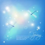 Spring abstract blue background with dragonflies Stock Photos