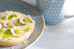 Spring abstract breakfast with sandwich and daisies Royalty Free Stock Images