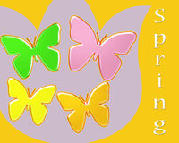 Spring abstract of brightly colored butterflies on a tulip background Royalty Free Stock Photography