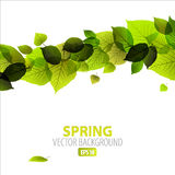 Spring abstract floral background Royalty Free Stock Images