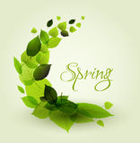 Spring abstract floral background Royalty Free Stock Image