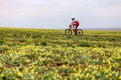 Spring adventure mountain bike competition Royalty Free Stock Photography