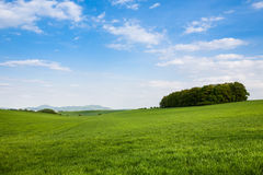 Spring agricultural landscape Royalty Free Stock Photography