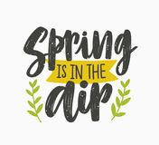 Spring Is In The Air inspiring phrase written with artistic cursive font or script and decorated with green leaves or. Branches. Seasonal lettering isolated on Royalty Free Stock Image