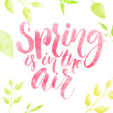 Spring is in the air watercolor lettering in green leaves frame vector illustration