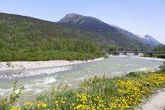 Spring In Alaska Stock Photo