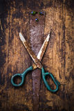 In the spring all blossoms.  Farm tools. Stock Photo