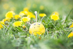 Spring Allergies - Sad ball in spring. Meadow stock photo