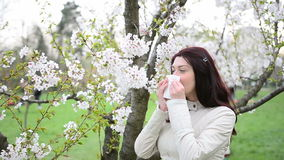 Spring allergy- video with sound Royalty Free Stock Image