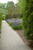 Spring alley. With a flowerbed of irises in Longwood Gardens PA NJ stock photo