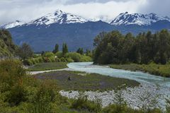 Spring along the Carretera Austral in northern Patagonia, Chile. Spring in Patagonia. Lupins flowering on the banks of the Rio el Canal along the Carretera royalty free stock images
