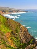 Spring along the Pacific Coast Highway, California. Royalty Free Stock Photo