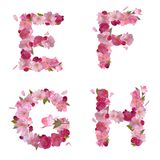 Spring alphabet with cherry flowers EFGH Royalty Free Stock Images