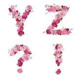 Spring alphabet with cherry flowers YZ and signs Stock Images