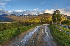 Spring alpine landscape with green fields and high snowy mountains,Bran,Transylvania. Romania,Europe Stock Images