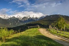 Spring alpine landscape with green fields and high snowy mountains,Bran,Transylvania. Romania,Europe Stock Image