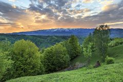 Spring alpine landscape with green fields and high snowy mountains,Bran,Transylvania. Romania,Europe Royalty Free Stock Photo