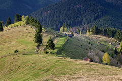 Spring alpine landscape with green fields in Transylvania, Romania Stock Photo