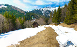 Spring alpine panorama Stock Photo