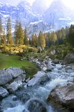 Spring alpine stream Royalty Free Stock Photo