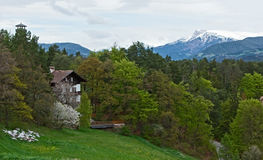 Spring in Alps Stock Images