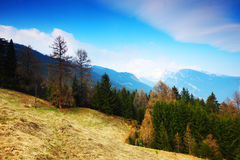 Spring alps Royalty Free Stock Photos