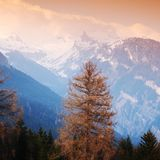 Spring alps Stock Photos