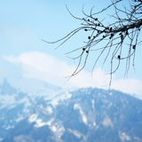 Spring alps Royalty Free Stock Image