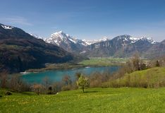 Spring in Alps Royalty Free Stock Images