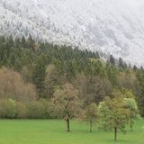 Spring in the Alps in Europe Royalty Free Stock Photos