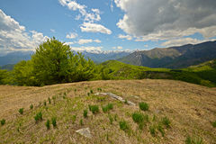 Spring in the Alps Stock Photo