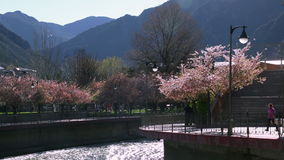 Spring in Andorra on a background of mountains. And mountain river stock video footage