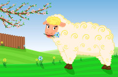 Spring on the animal farm Stock Images