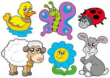 Spring animals collection Stock Images