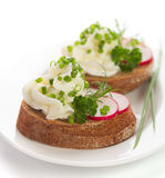 Spring appetizer with cream cheese, radish Stock Image