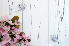 Spring apple blossom with pair birds on old vintage wooden background. Stock Photos