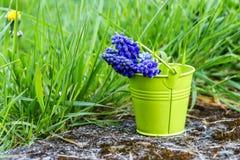 Spring April freshness Stock Photo