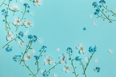 Light turquoise flat background with spring flowers Royalty Free Stock Photo