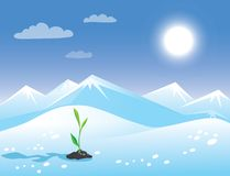 Spring arctic sunny landscape with green sprout. Royalty Free Stock Photo
